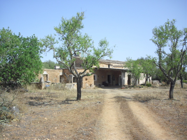 Farmhouse For Renovation with Large Land, near Campos