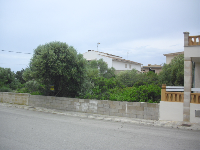 Urban Plot in Sa Rapita
