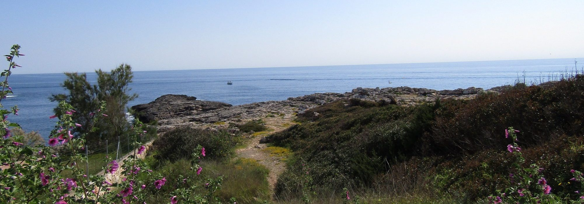 Exclusive Land with Open Sea Views in Cala d'Or, Mallorca